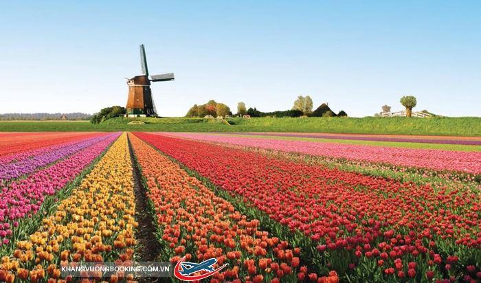 Mùa xuân châu Âu rực rỡ