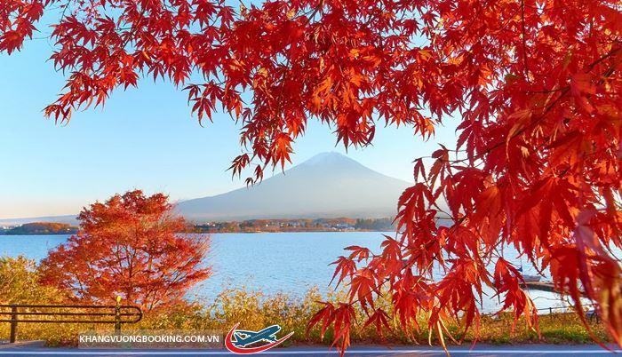 Mùa thu - mùa lá đỏ Nhật Bản