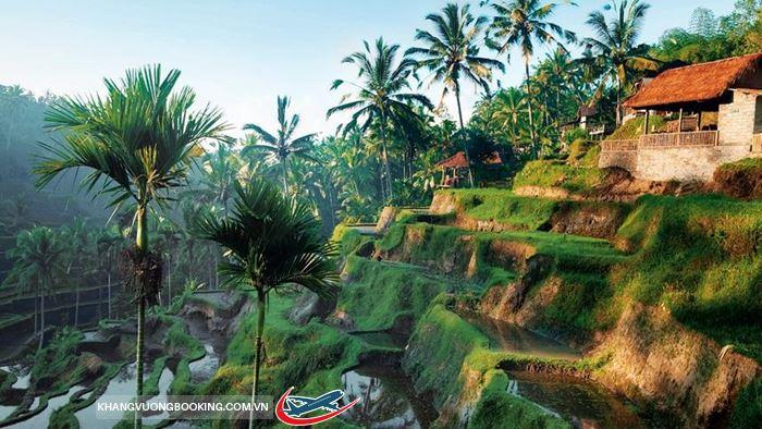 Thiên nhiên Baili tươi đẹp quyến rũ
