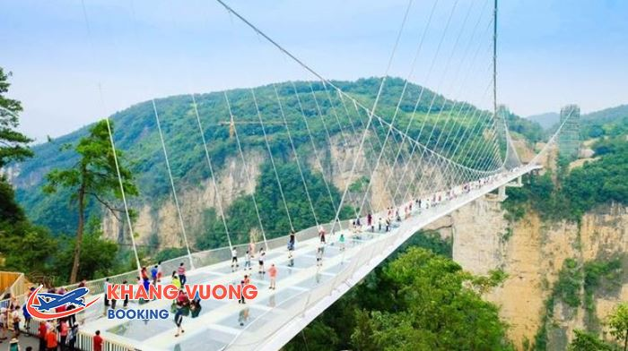 Cầu kính Trương Gia Giới cao nhất và dài nhất thế giới