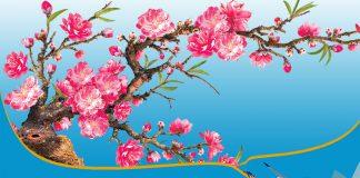 Vietnam Airlines, Bamboo Airways triển khai dịch vụ vận chuyển đào mai
